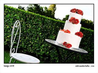Indulge confectionery boutique is opening up in Rivonia and specializes in exclusive wedding cakes photographed by Marcus Maschwitz