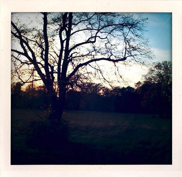 mm-sunset