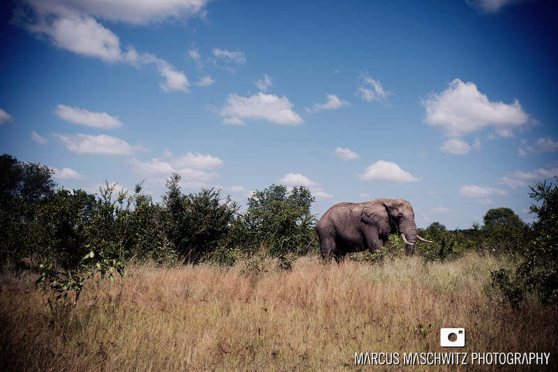 my-south-africa-03